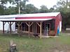 barn-repairs9.png