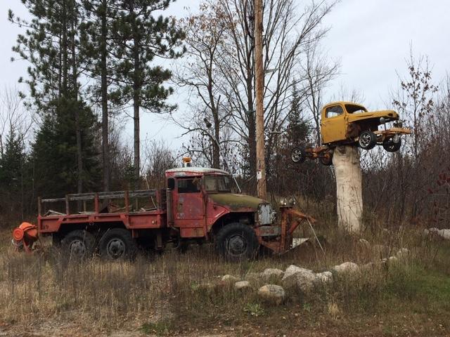 truck_on_tree